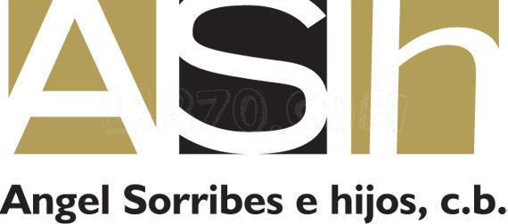 TALLER ÁNGEL SORRIBES E HIJOS
